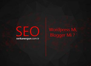 SEO İçin Wordpress Mi, Blogger Mi ?